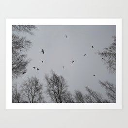 Crow Hour Art Print