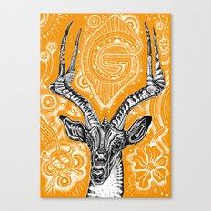 Gazelle Canvas Print
