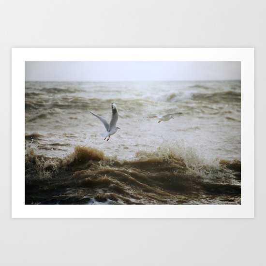 Of wind and waves and flight... Art Print