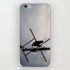 Ravens Perch iPhone & iPod Skin