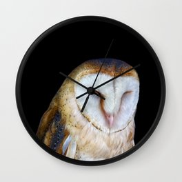 The Barn Owl Wall Clock