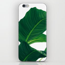 Green Leafs (Color) iPhone Skin