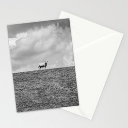 A lonely Sheep on the Hill | Black & White | Nature Photography | Fine Art Photo Print Stationery Cards