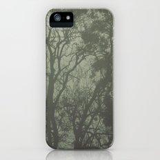 Misty Trees Slim Case iPhone (5, 5s)