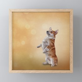 Dog breed Welsh Corgi Framed Mini Art Print