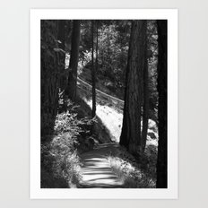 Places in Black & White: Burney Falls 23 Art Print