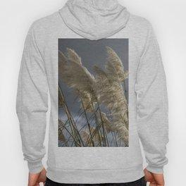 Pampas Grass Hoody