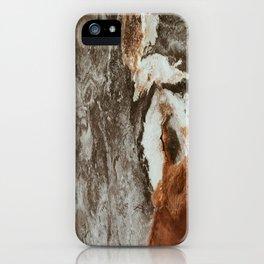 Wyoming/Mars iPhone Case