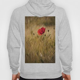 Poppies in a summerfield - Flowers Floral Hoody