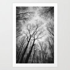 Vertigo 1 Art Print