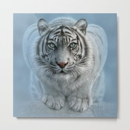 White Tiger - Wild Intentions Metal Print