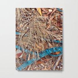 Natures Beauty Metal Print