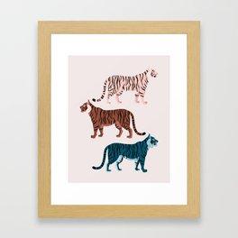 Three Tigers Framed Art Print