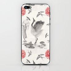 Crane, Swallow, Frog iPhone & iPod Skin