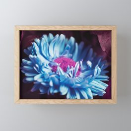 Experiments Framed Mini Art Print