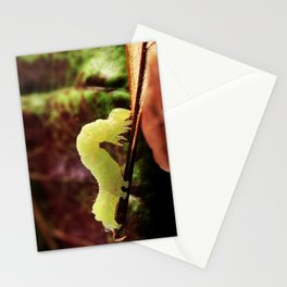 Close-up Green Inchworm And Its Looping Gait Stationery Cards