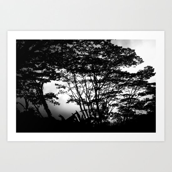 Hilo Misty Morning Art Print