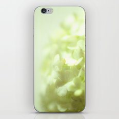 {delicate} iPhone & iPod Skin