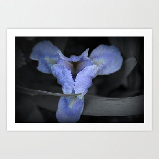 Duality  and Iris Art Print