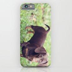 Chocolate Anyone? Slim Case iPhone 6s
