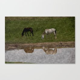 Grazing Horses by the River Canvas Print