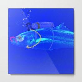 Blue Fish Snorkeling Underwater  Metal Print