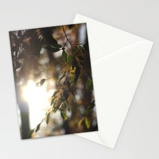 Leaves and Light Stationery Cards