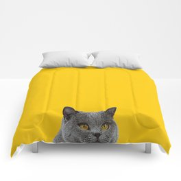 British Short-haired Cat Saffron Yellow Home Decor Pet Lovers Art Grey British Comforters