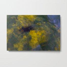 Colorful Flower Motion Metal Print