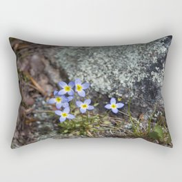 Thyme Leaved Bluets #2 Rectangular Pillow