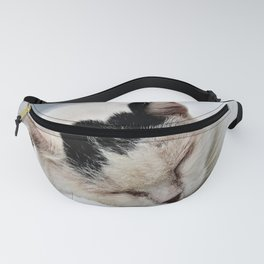 Cat Dreaming Fanny Pack