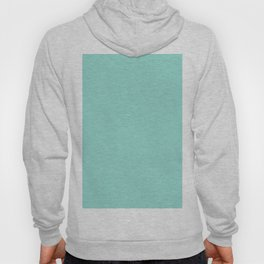 Duck Egg Blue Hoody