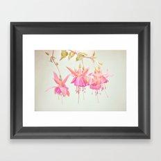 Colors Of Flowers Framed Art Print