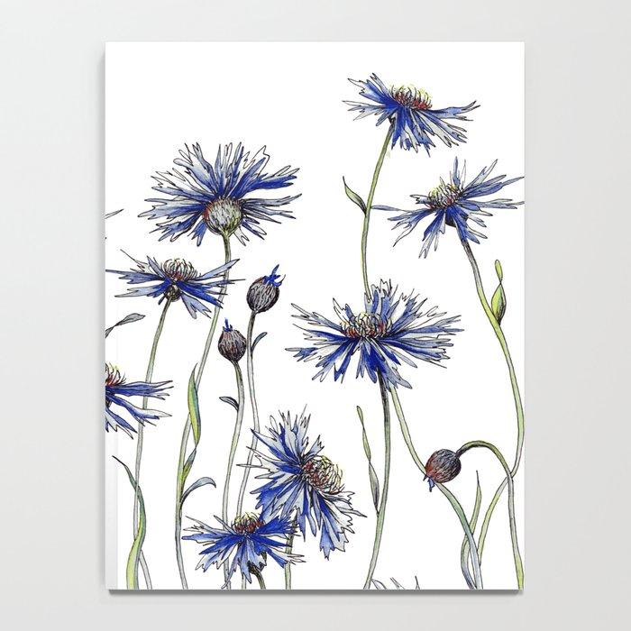 Blue Cornflowers, Illustration Notebook