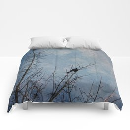the grackle Comforters