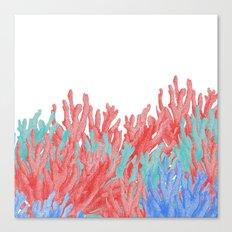 Modern nautical coral blue teal floral reef Canvas Print