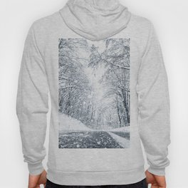 Winter forest snow road. Forest road winter snow view. Hoody