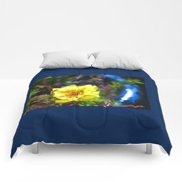 Dainty thing Comforters