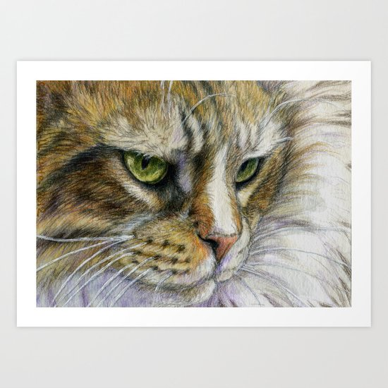 Cat portrait 806 Art Print