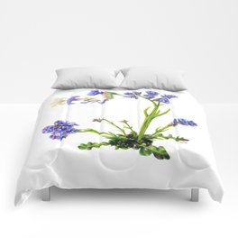 Statice Flower Dissection Comforters