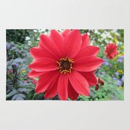 Red Flower, Dumbarton Oaks Rug