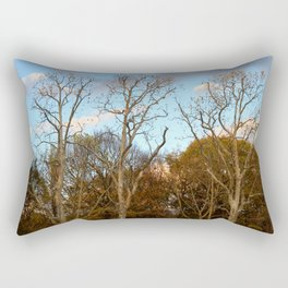 Treptow II Rectangular Pillow