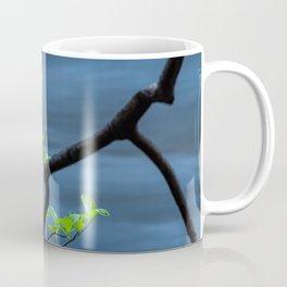 Blooming Dogwoods Coffee Mug