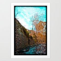 Creek Walk Art Print