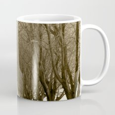 Tree Lined Road Mug