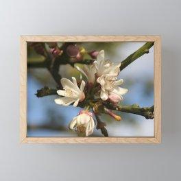 Orange Tree Flowers Framed Mini Art Print