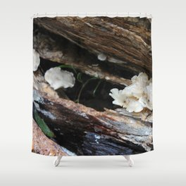 Where The Fairies Live Shower Curtain