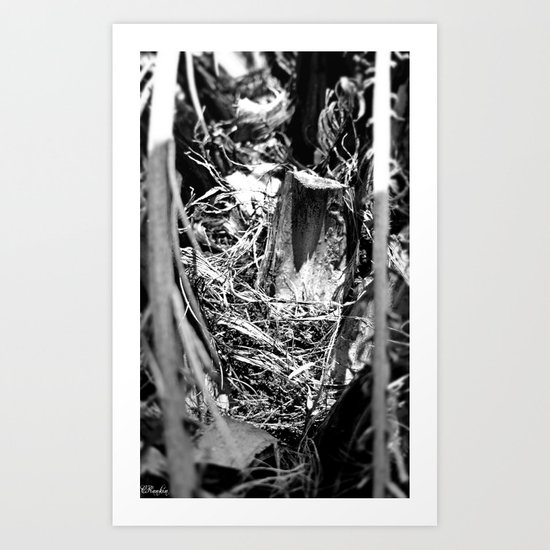 Entrance to Decay Art Print