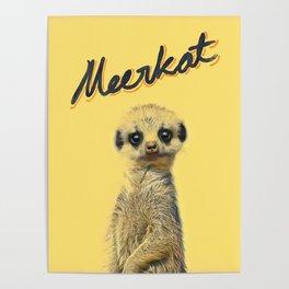 Meerkat | Yellowcard NO.1 Poster
