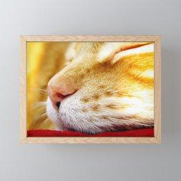 No Day Is So Bad It Can't Be Fixed With A Nap. Framed Mini Art Print